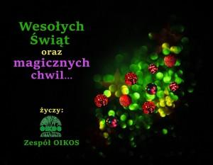 Wesołych Świąt Bożego Narodzenia Oraz Szczęśliwego Nowego Roku Życzy Zespół OIKOSlab